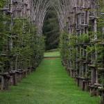 Природная архитектура