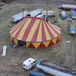Видно выпала судьба в цирковом билете