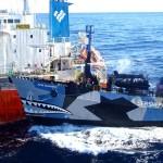 Добрые пираты «Sea Shepherd»
