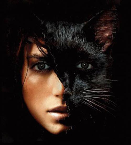 картинки человек кошка
