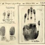 История на кончиках пальцев