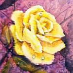 Мария Башкирцева: девушка —роза